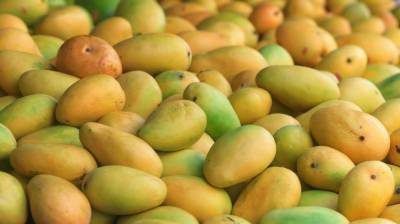 Yet another good news for Pakistani mango exporters from World market
