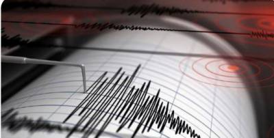 Earthquake jolted parts of Pakistan on