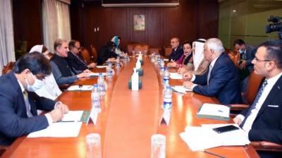 Pakistan FM Shah Mehmood Qureshi held important meeting with Arab Parliament delegation